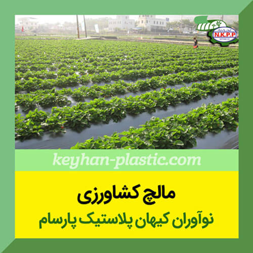 نحوه نصب مالچ کشاورزی